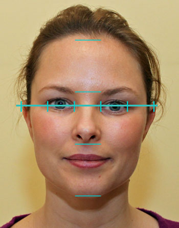 Facial anatomy and proportions