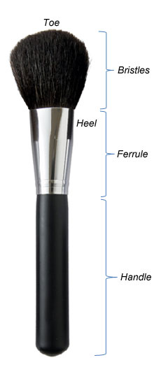 Makeup brush construction