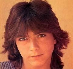 1970s shag hair David Cassidy