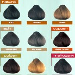 International Colour Charts for Hairdressing